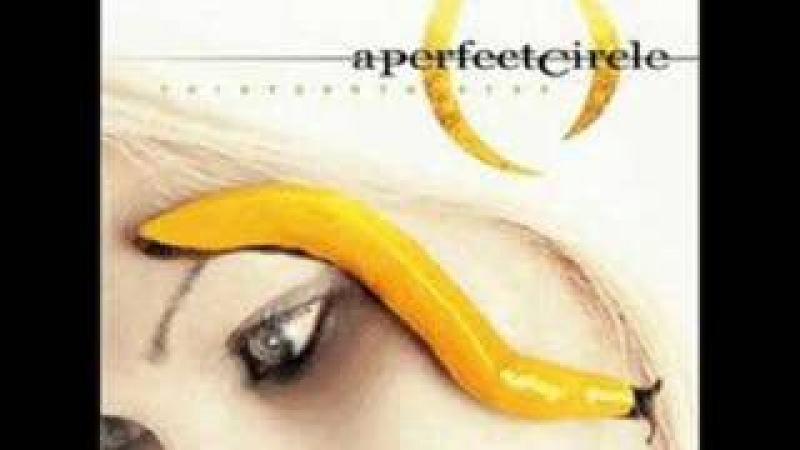 10. Pet - A Perfect Circle