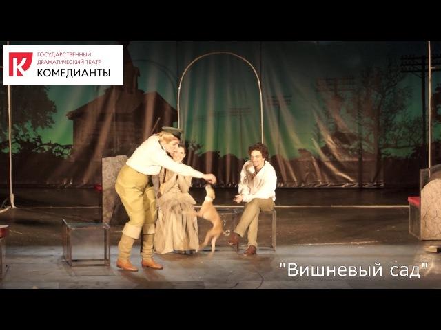 Вишневый сад А.П. Чехов, театр Комедианты