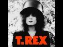 T. Rex - The Slider 1972 (full album)