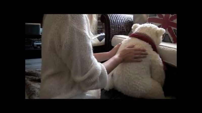 ASMR Relaxing Back Massage Minty