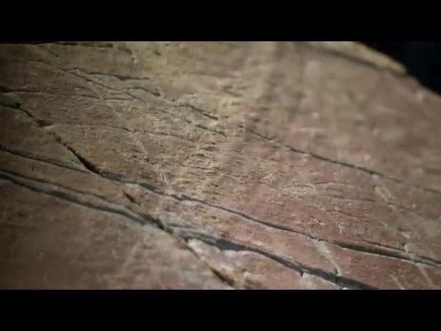 BBC Истоки жизни Зарождение 1 серия