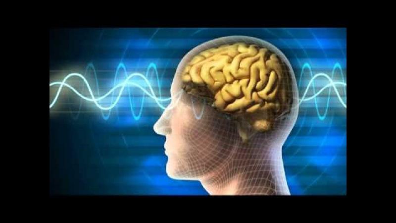 Buồn ngủ hơn cả bài giảng của cô giáo sau 12s nghe bản nhạc sóng não delta này