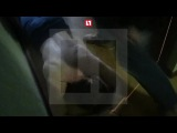 Фальшивомонетчик расплакался при задержании в Москве — видео - Видео - L!fe