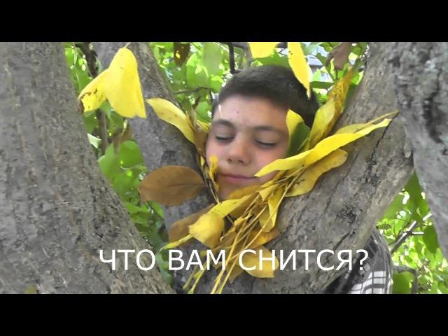 Лайма Вайкуле, Аль Бано и 7 класс: Листья желтые