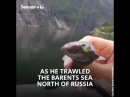 These bizarre deep-sea creatures were caught by a Russian fisherman.