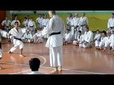 Stage Yudanshakai Curno 2013: Il M° Fugazza spiega Heian Shodan Bunkai