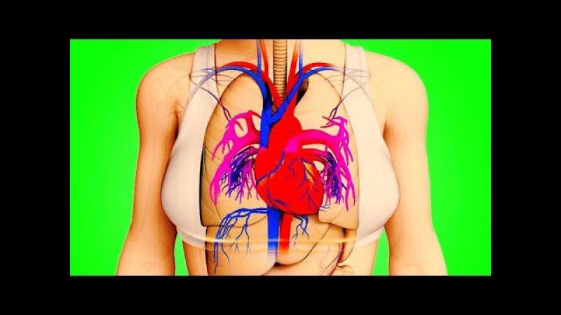 Тело Предупредит Вас За Месяц До Инфаркта