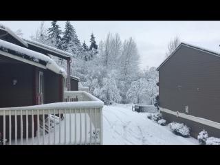 Снег в Портланде❄️❄️❄️