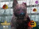 Хеллоуинская считалочка про Чернобыль