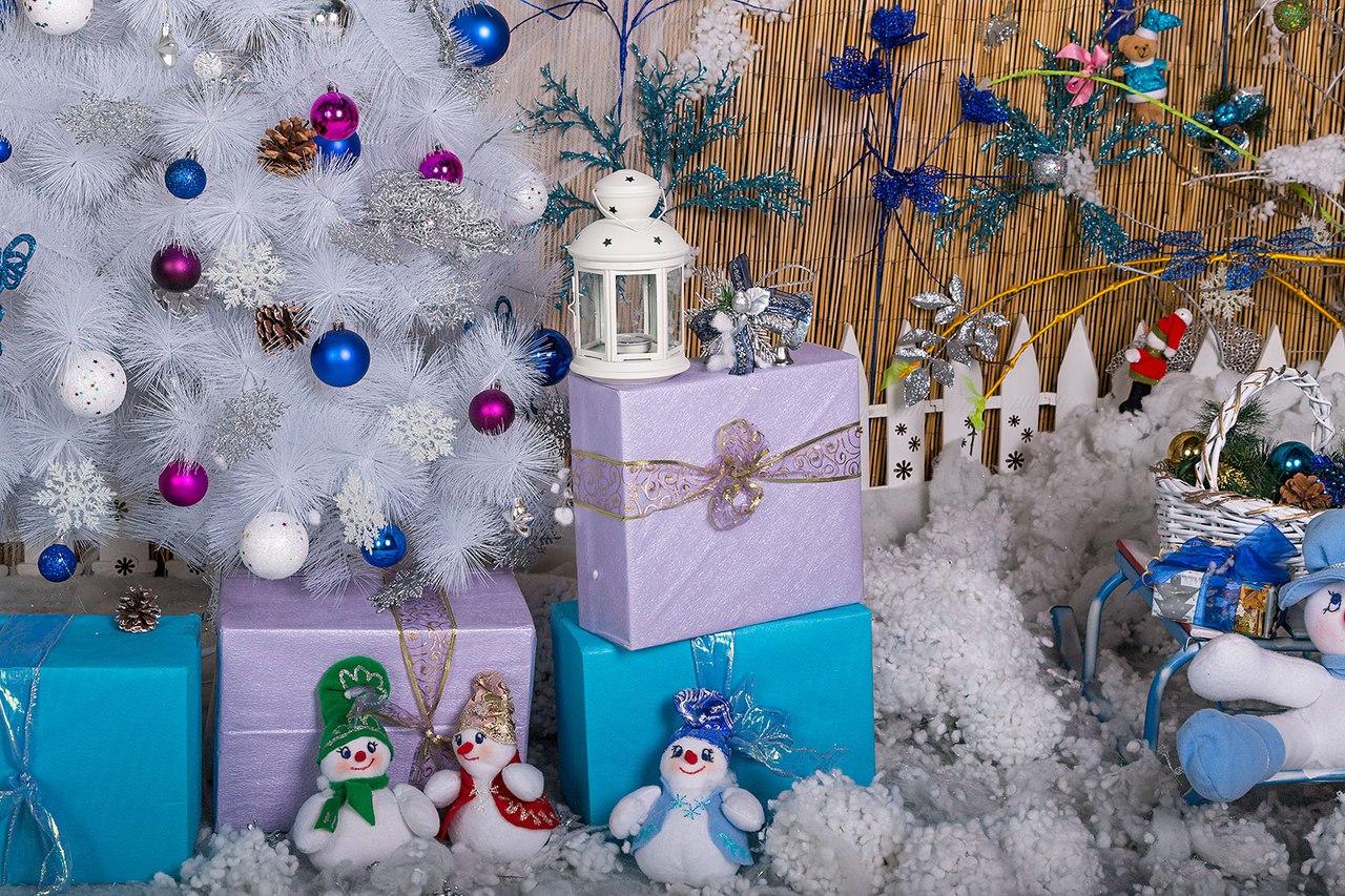 Фотостудии с новогодними декорациями ладожская доченька каждый