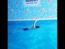 Детское плавание в бассейне Aquastars Алматы