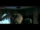 Гарри Поттер. iLocked в Ростове квесты в реальности. Буденновский, 97. 275-44-64