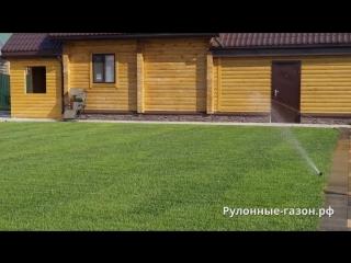 Рассказ об укладке рулонного газона