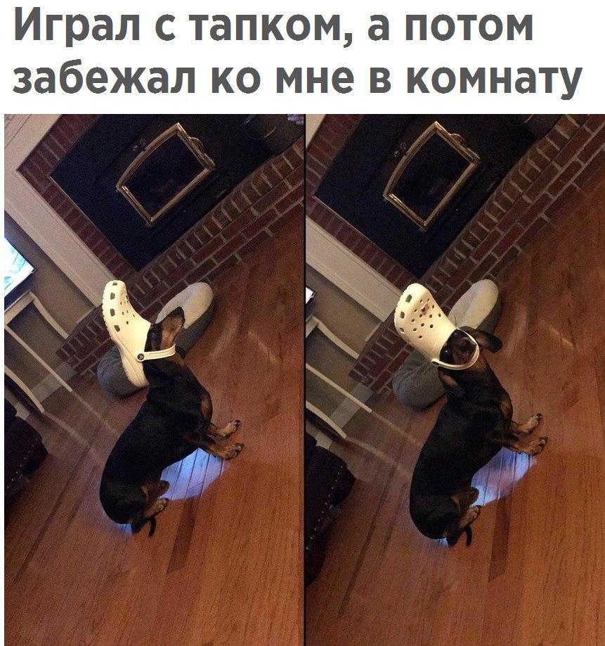 https://pp.userapi.com/c638921/v638921353/3f5f4/VuBoCkToaxc.jpg