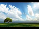 Dan Gibson's SolitudesSea Breeze