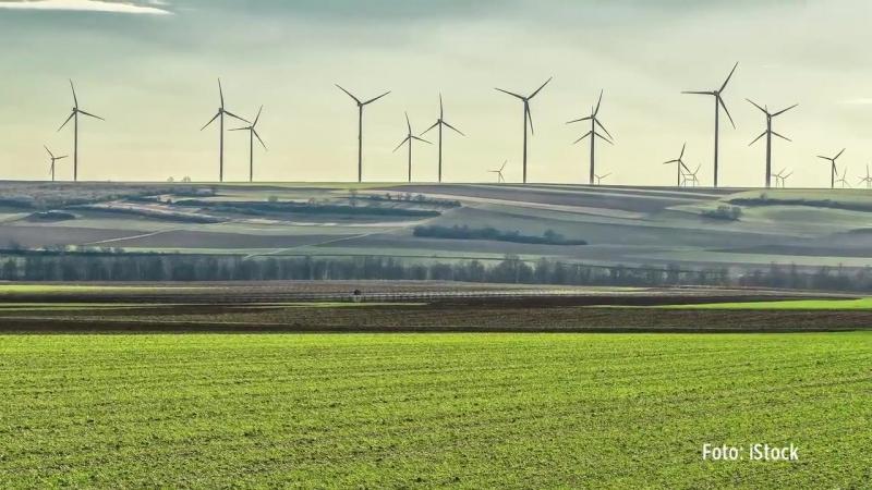 """Hans-Werner Sinn- Energiewende kann nicht funktionieren – """"kostet nur fürchterlich viel Geld"""""""