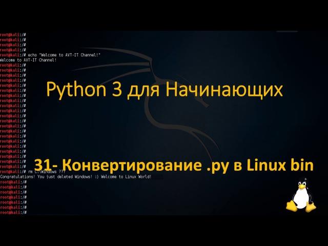 31.Python для Начинающих - Конвертирование .py в Linux bin