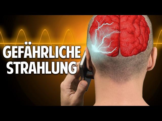 Handy WLAN - wie krank machen sie uns wirklich? - Prof. Dr. Dr. med. Enrico Edinger