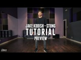 Dance Tutorial Preview Quinn XCII - Stung - Jake Kodish Choreography