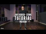 Dance Tutorial Preview Quinn XCII - Stung - Jake Kodish Choreography