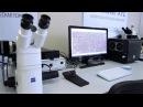 "SIAMS 800 - Микроскоп AXIO VERT.A1 MAT с комплектом моторизации производства ООО ""СИАМС"""