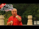 《流行无限》 20160828 螳螂拳传人 于海 CCTV-4