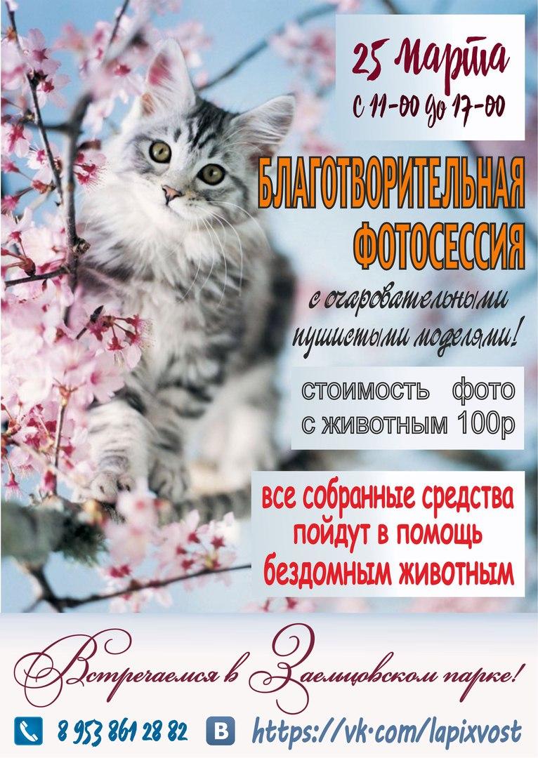 Афиша Новосибирск Благотворительная фотосессия