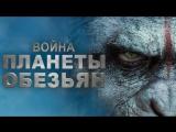 Премьера (2017)