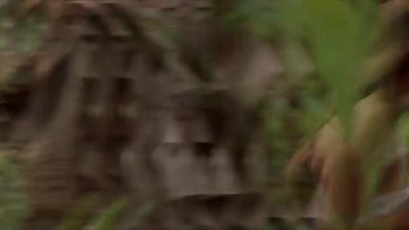 Dan Balan - Люби - Версия 2 - HD - [ VKlipe.Net ]