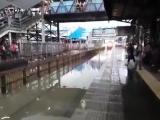 Машинист в Индии не стал тормозить поезд, несмотря на затопленные пути