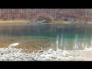 Горный Алтай голубое озеро вблизи села Аскат