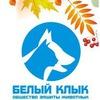 """""""БЕЛЫЙ КЛЫК"""" Общество защиты бездомных животных"""