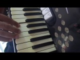 ensinando a musica SABI