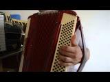 Aula Baixos Ovo de codorna Luiz gonzaga acordeon sanfona video