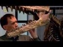 классный фильм! Сражения Динозавров  Защитники.  Документальный фильм про диноз ...
