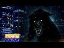 Тайны Чапман - Дикие звери большого города (18.02.2017) HD
