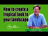 How to create a Tropical landscape in your yard Designers Landscape#612