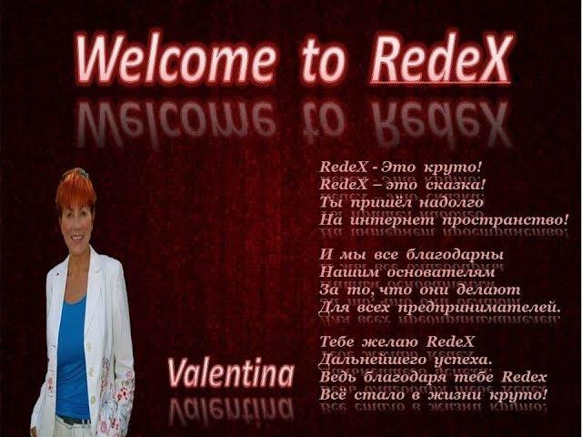 RedeX - Маркетинг компании (Алла Мороз)