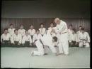 大東流合気柔術 総伝之技 Daitō ryū Aiki jūjutsu Sōden Techniques
