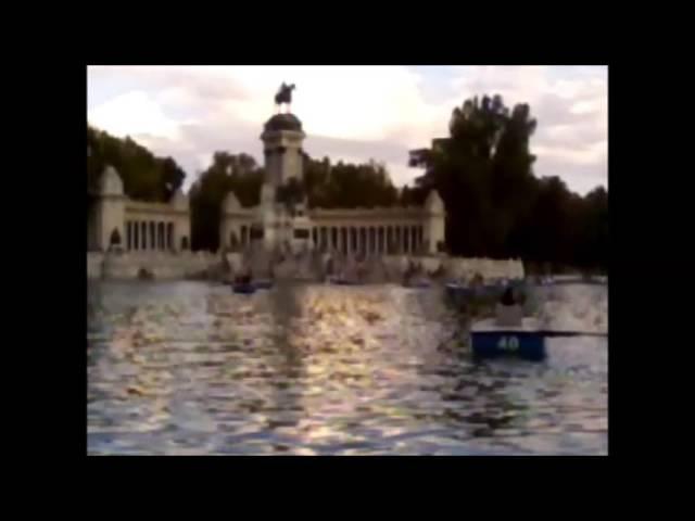 Patos y Peces en el Parque del Retiro Madrid 2015