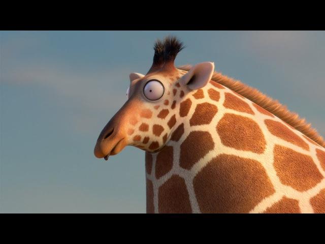ROLLIN' WILD - 'Giraffe ' - what if animals were round?