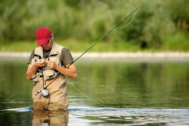 Бизнес план: Как организовать платную рыбалку  Кто не любит рыбалку?