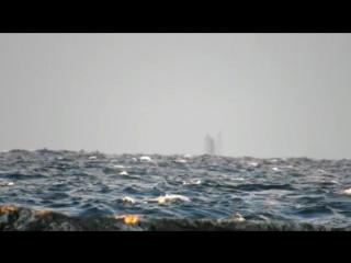 Корабль-призрак сняли на видео на Великих озерах в США
