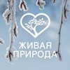 Телеканал «Живая природа»