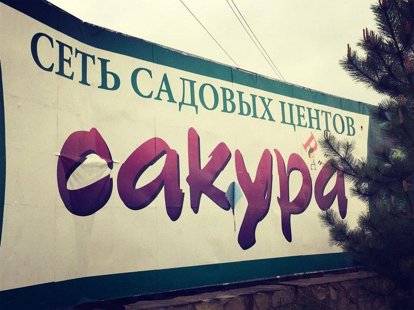 Дима Кравец | Днепропетровск (Днепр)