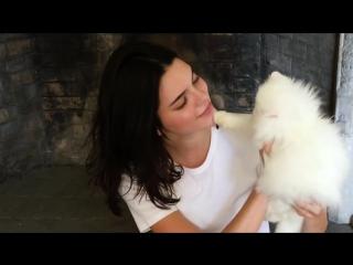 Kendall_Jenner_Meets_the_Worlds_Cutest_Kitten_-_Vogue