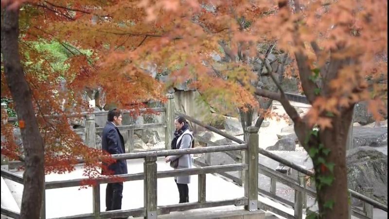 Сакура - женщина, умеющая слушать 10/10 (2014)