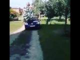 Як правельно привозити деревце молодй
