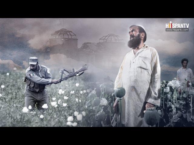 El opio: la otra guerra de Afganistán - Parte 1