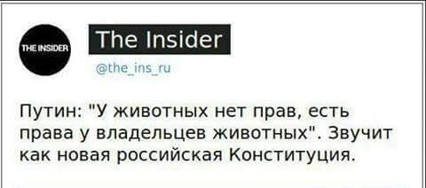 """Людей беспокоит """"информационный беспредел"""", - Путин предложил подумать о способах цензуры в России - Цензор.НЕТ 1924"""